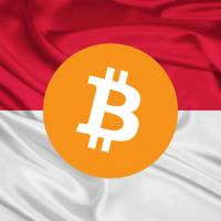 Bitcoin indonesia cryptocurrency